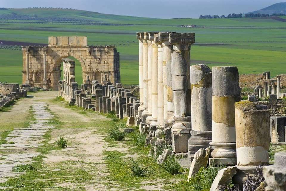 The Pillared Main Street leading up to the Beautifully Preserved Triumphal Arch of Volubilis